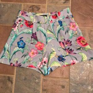 NWTS Ann Taylor Tropical floral shorts 2P